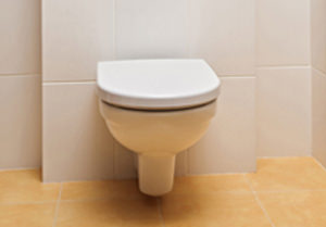 Pan in small toilet room