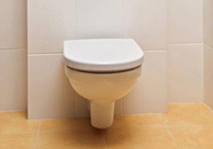 Toilette verstopft was tun